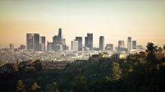 LA Skyline 21323