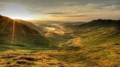 Landscape 28213