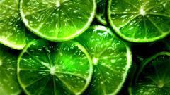 Lime Green Wallpaper 21080