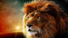 Lions Wallpaper 5299