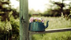 Lovely Flower Pot Wallpaper 42738
