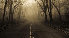 Mist Wallpaper 27429