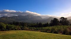 Mountain Valley 29899