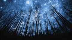 Night Sky Wallpaper 11303