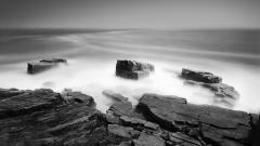 Ocean Mist 27426