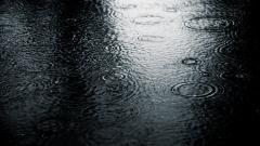 Rainy 34628