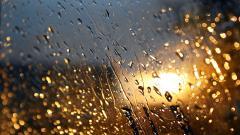 Rainy HD 34635