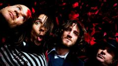 Red Hot Chili Peppers Wallpaper 42707