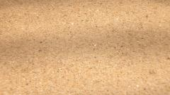 Sand Pictures 22219