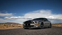 Shelby GT500 30647