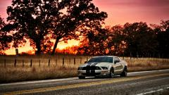 Shelby GT500 Wallpaper 30644