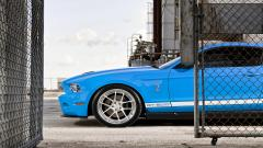 Shelby GT500 Wallpaper 30646