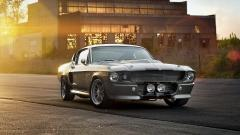 Shelby GT500 Wallpaper 30653