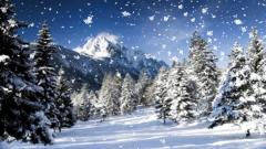 Snowflakes Falling Wallpaper 37165