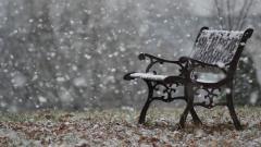 Snowflakes Falling Wallpaper 37173