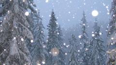 Snowflakes Falling Wallpaper 37174