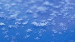 Snowflakes Falling Wallpaper 37177