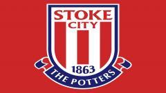 Stoke City 4363