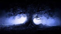 Tree Wallpaper 10048