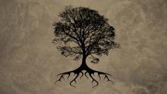 Tree Wallpaper 10049