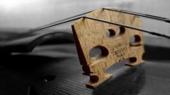 Violin 34039