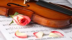 Violin Wallpaper 34033