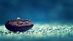 Water Drop Wallpaper 26139