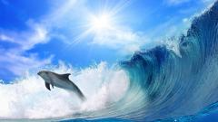 Wave Wallpaper 12074