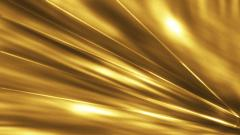 White and Gold Wallpaper 23771