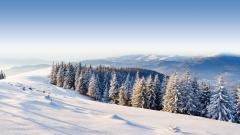 Winter Mountain Landscape 29625