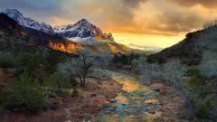 Zion National Park 31593