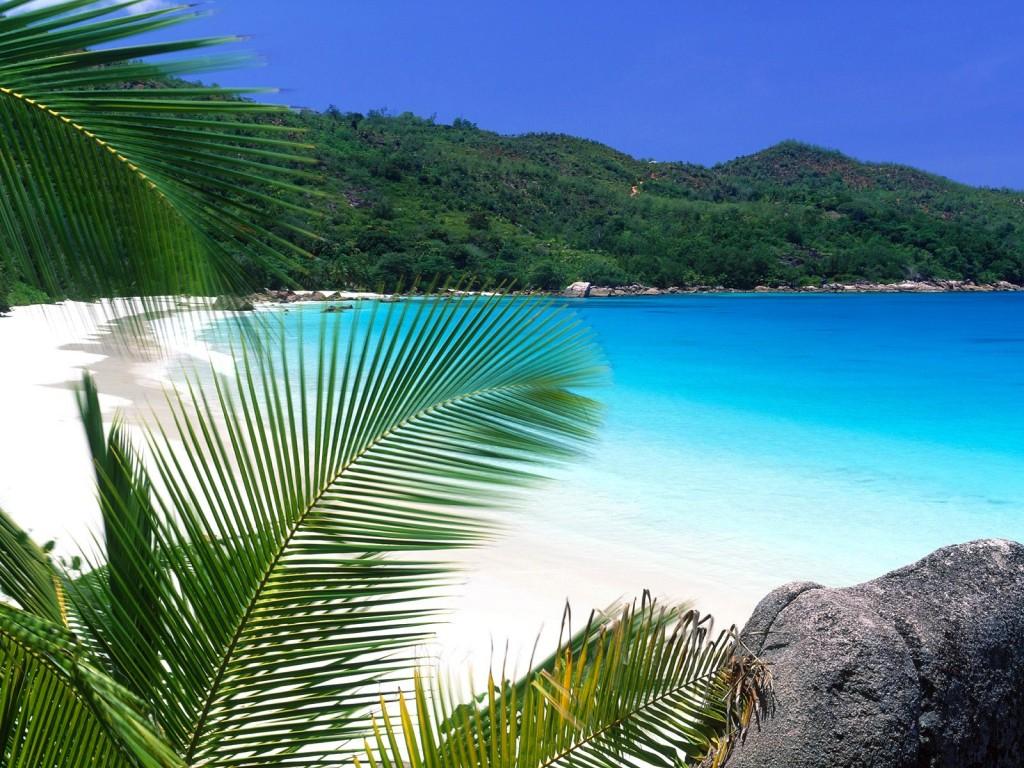 tropical beach screensavers 21492