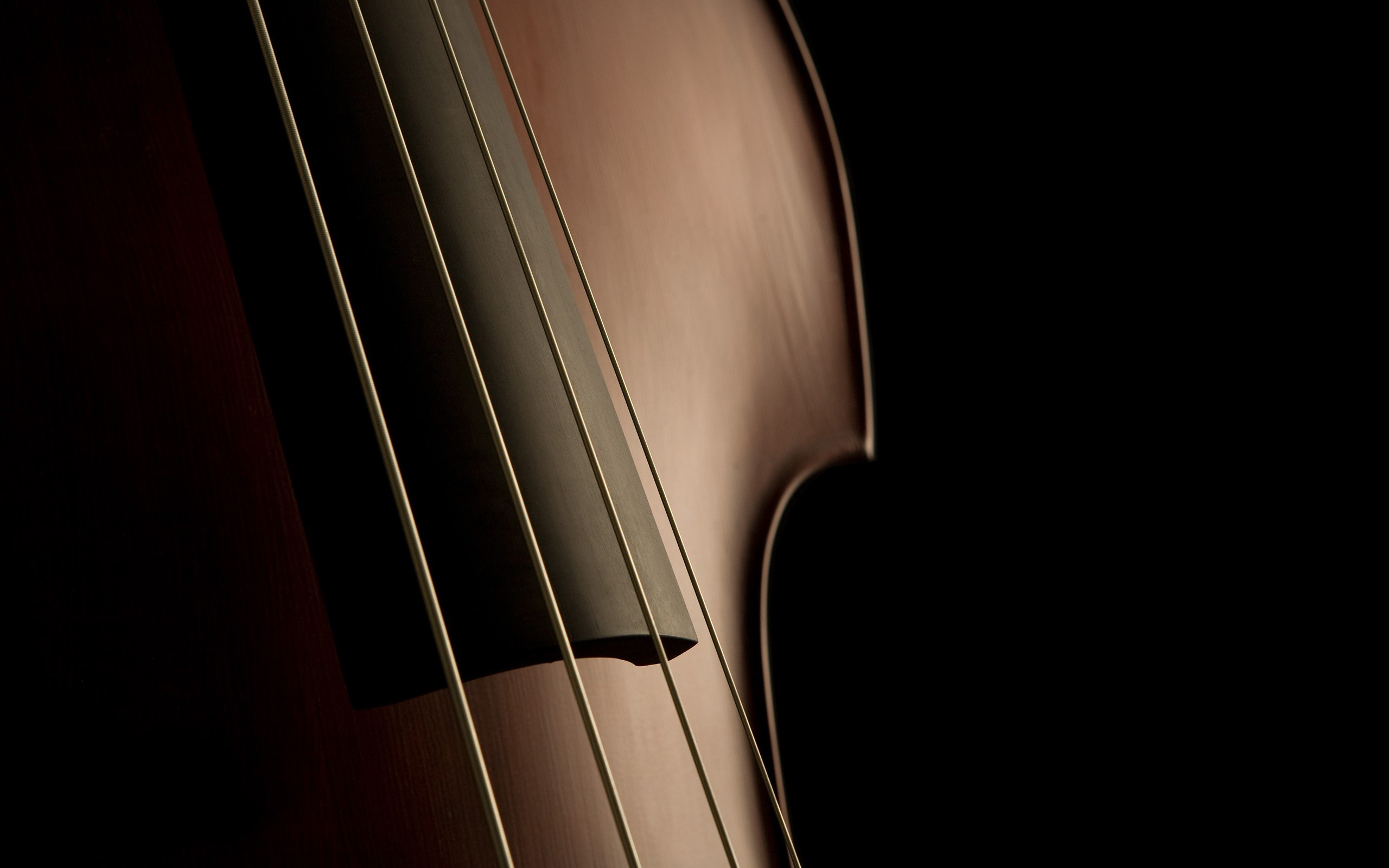 Violin Wallpapers 34038 2560x1600 px ~ HDWallSource.com