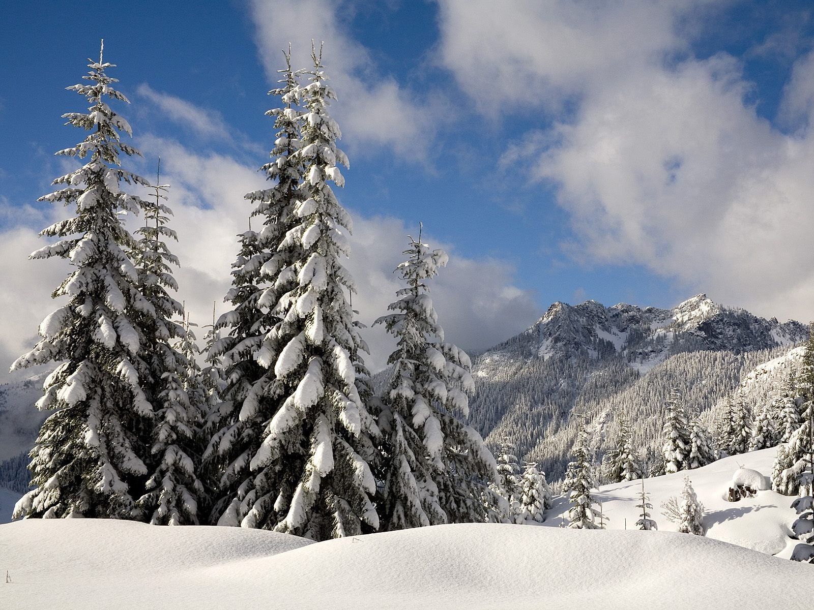winter mountain wallpapers 29610