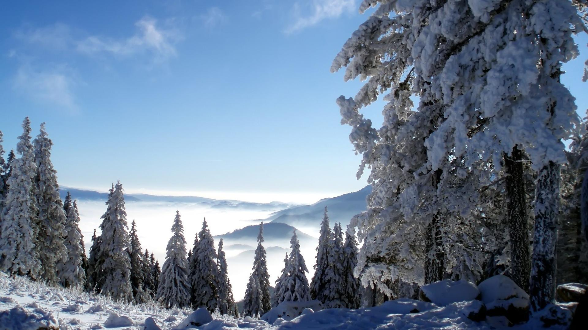 winter mountains 29607