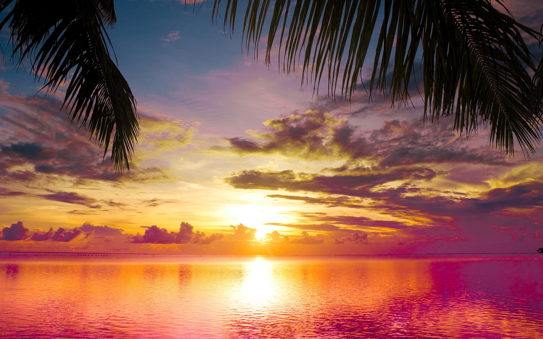 beach sunset 28806