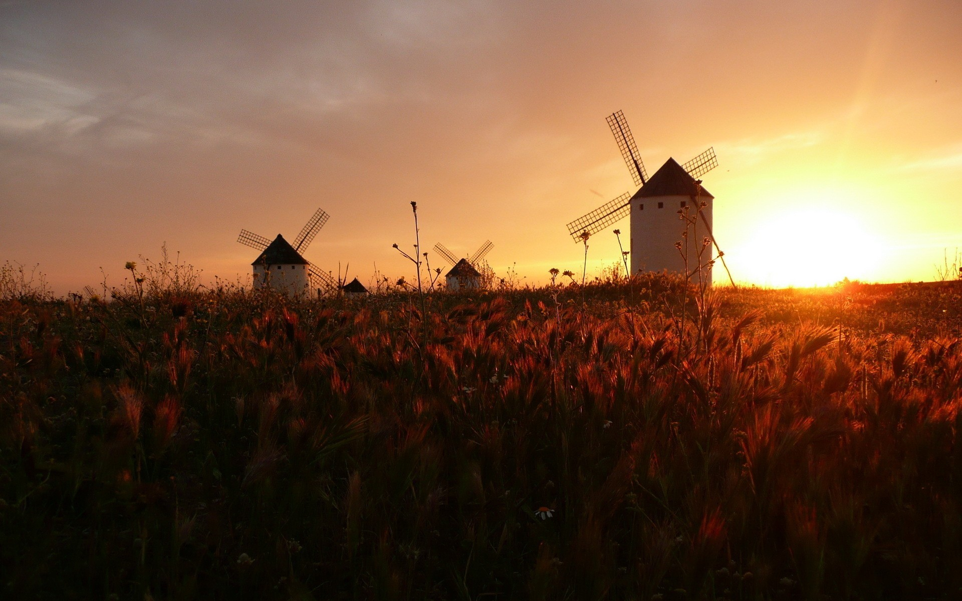 beautiful windmill wallpaper 26063
