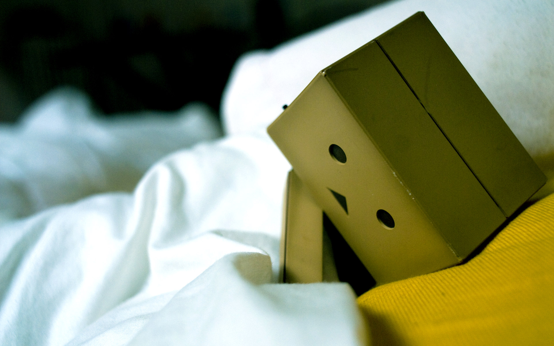 cute danbo wallpaper 24527