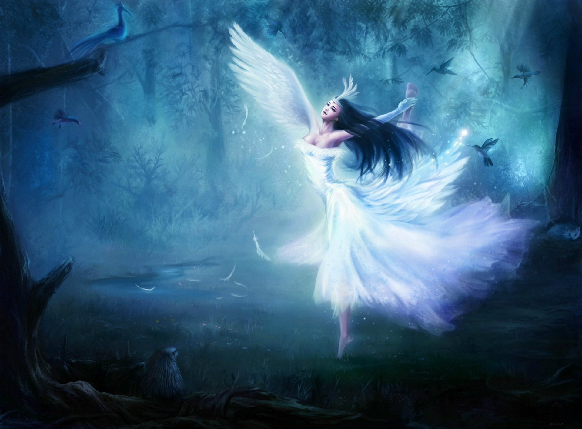 fairy wallpaper 41463