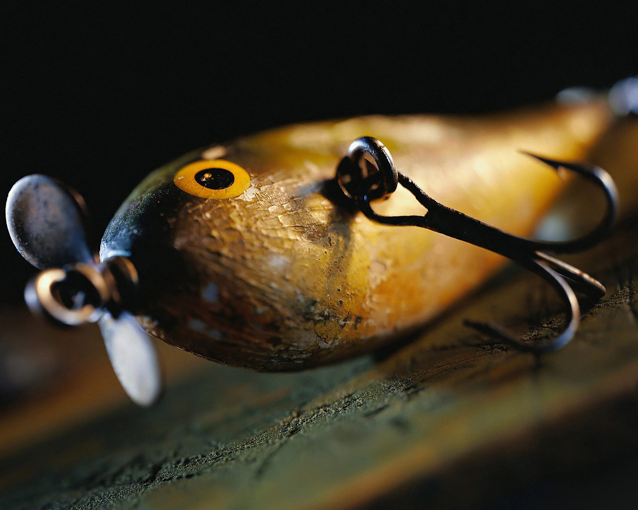 fishing wallpaper 19699