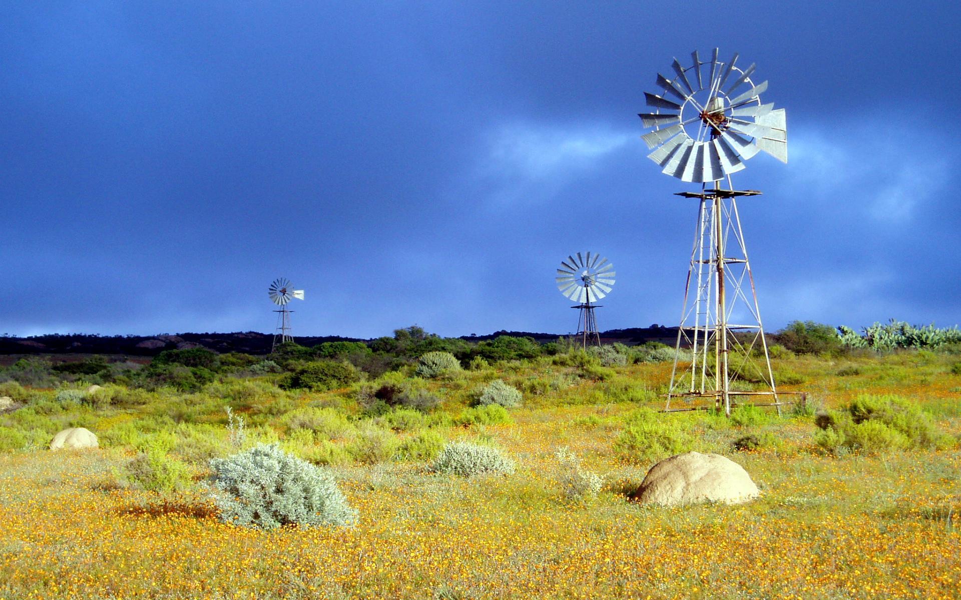 free windmill wallpaper 26057