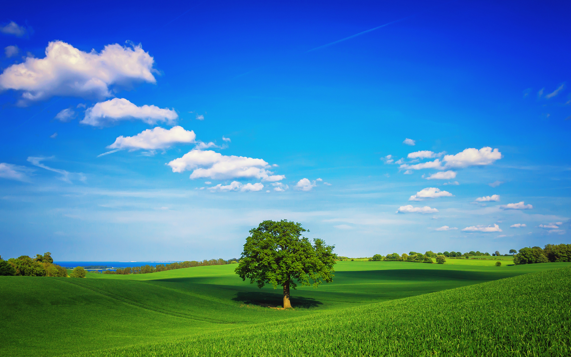 landscape photos 32794