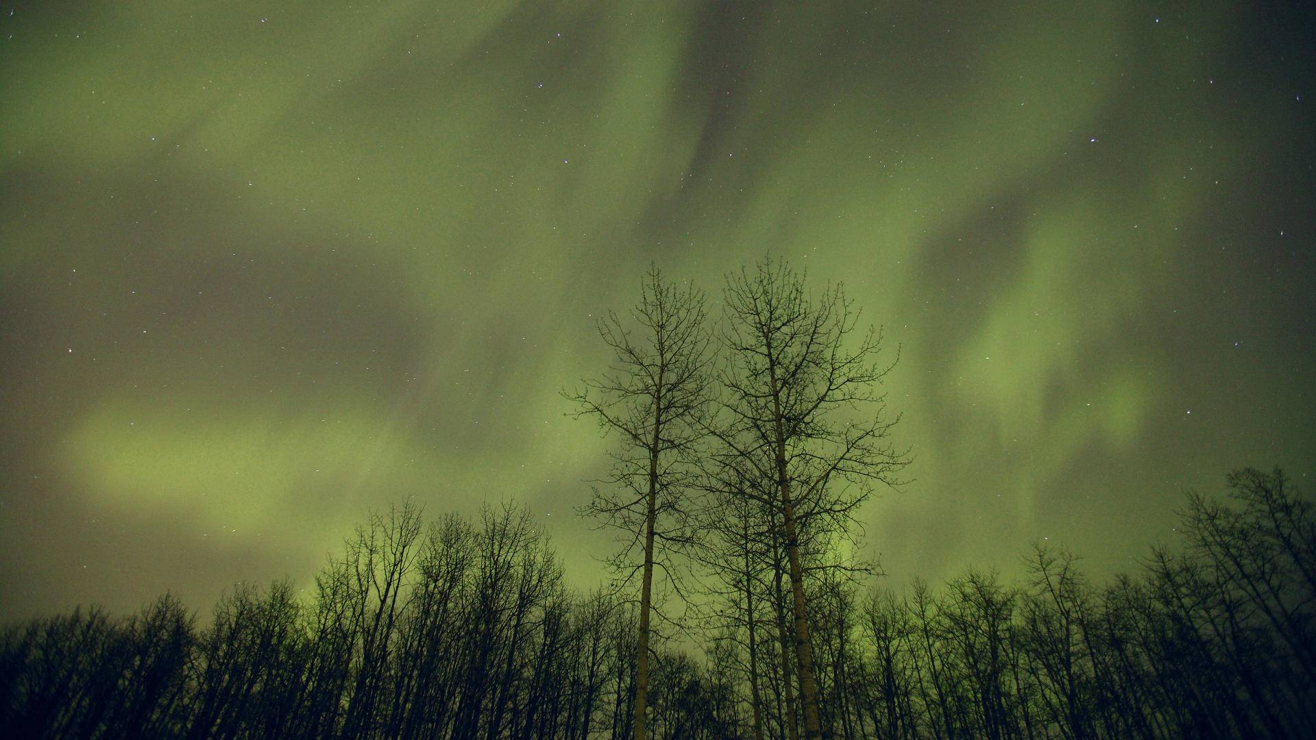 polar lights wallpaper 34711