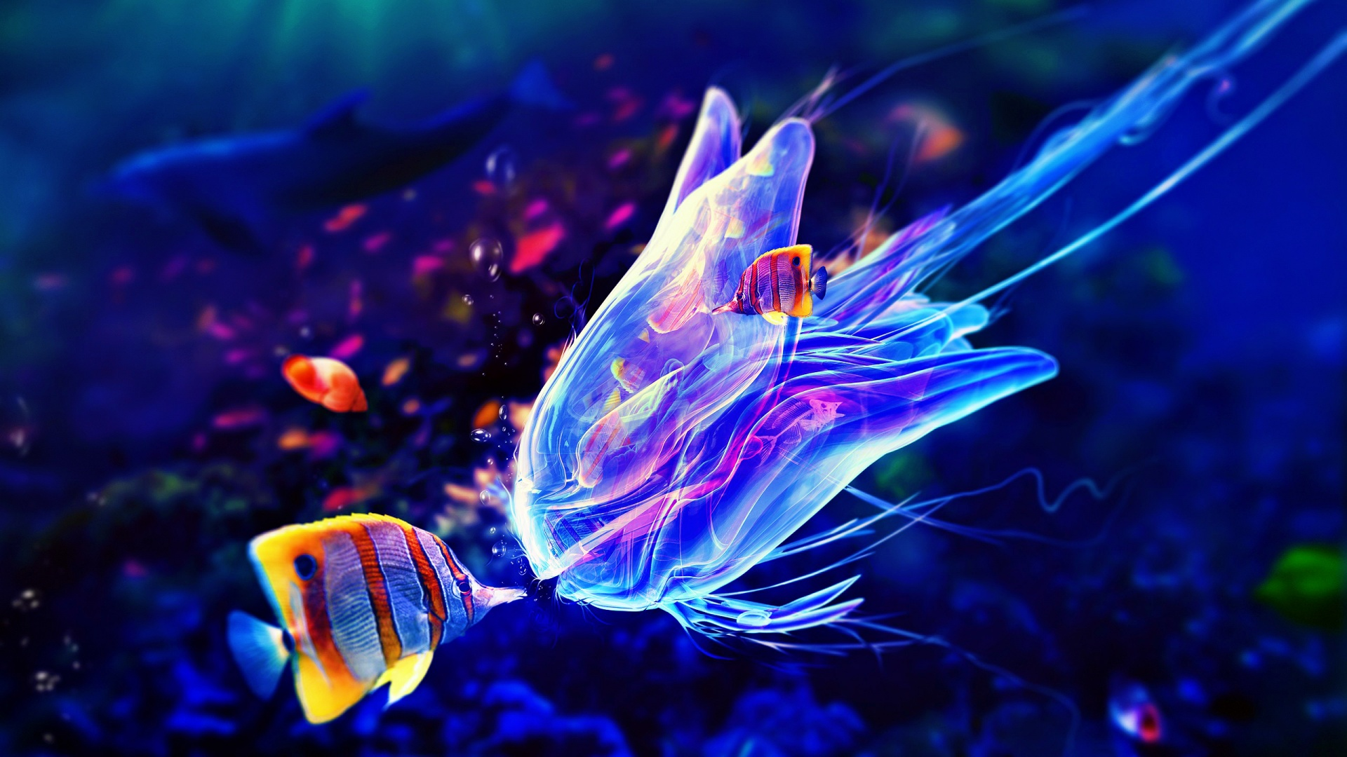 jellyfish art wallpaper 28014