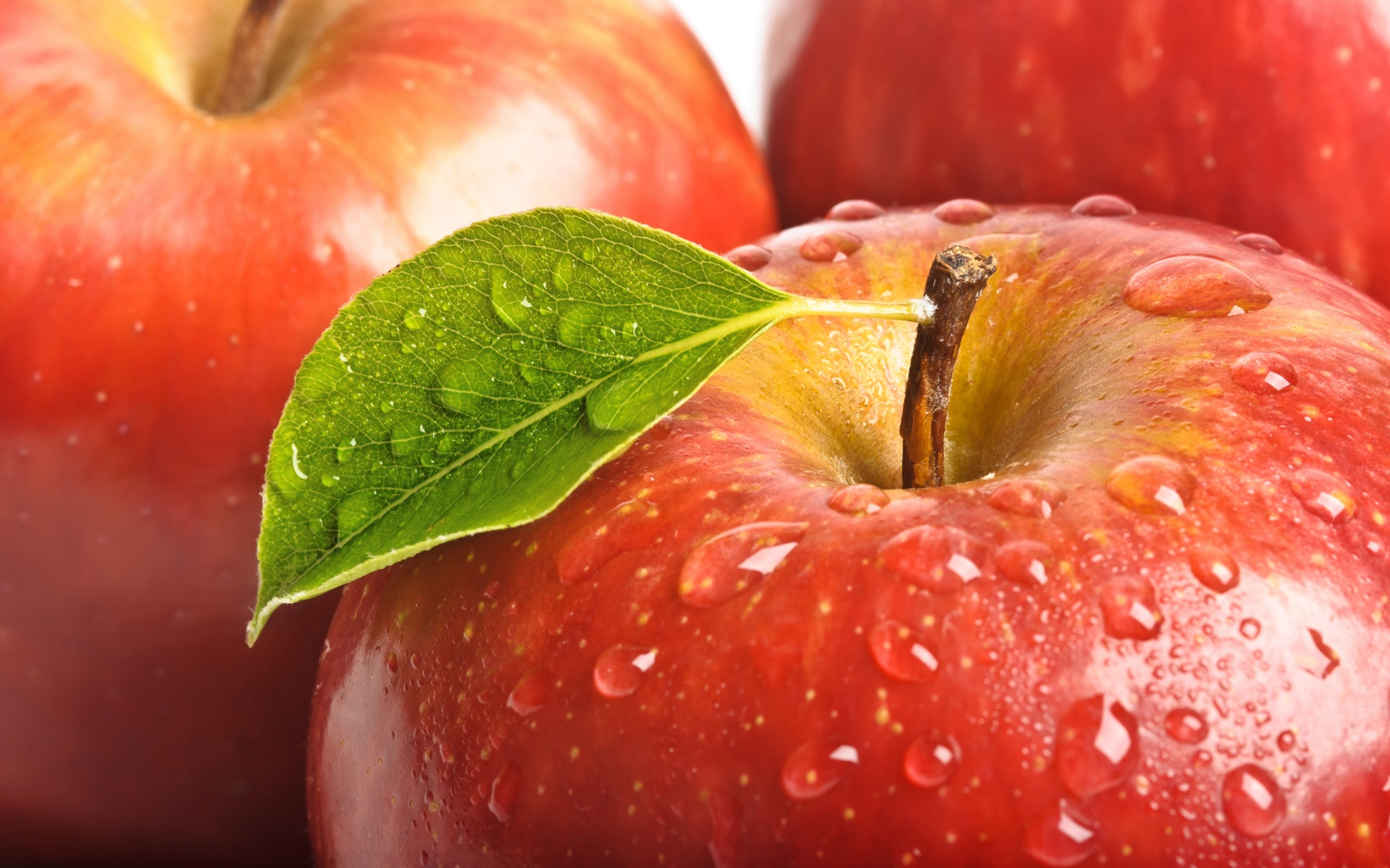 red apple 34696 2560x1600px