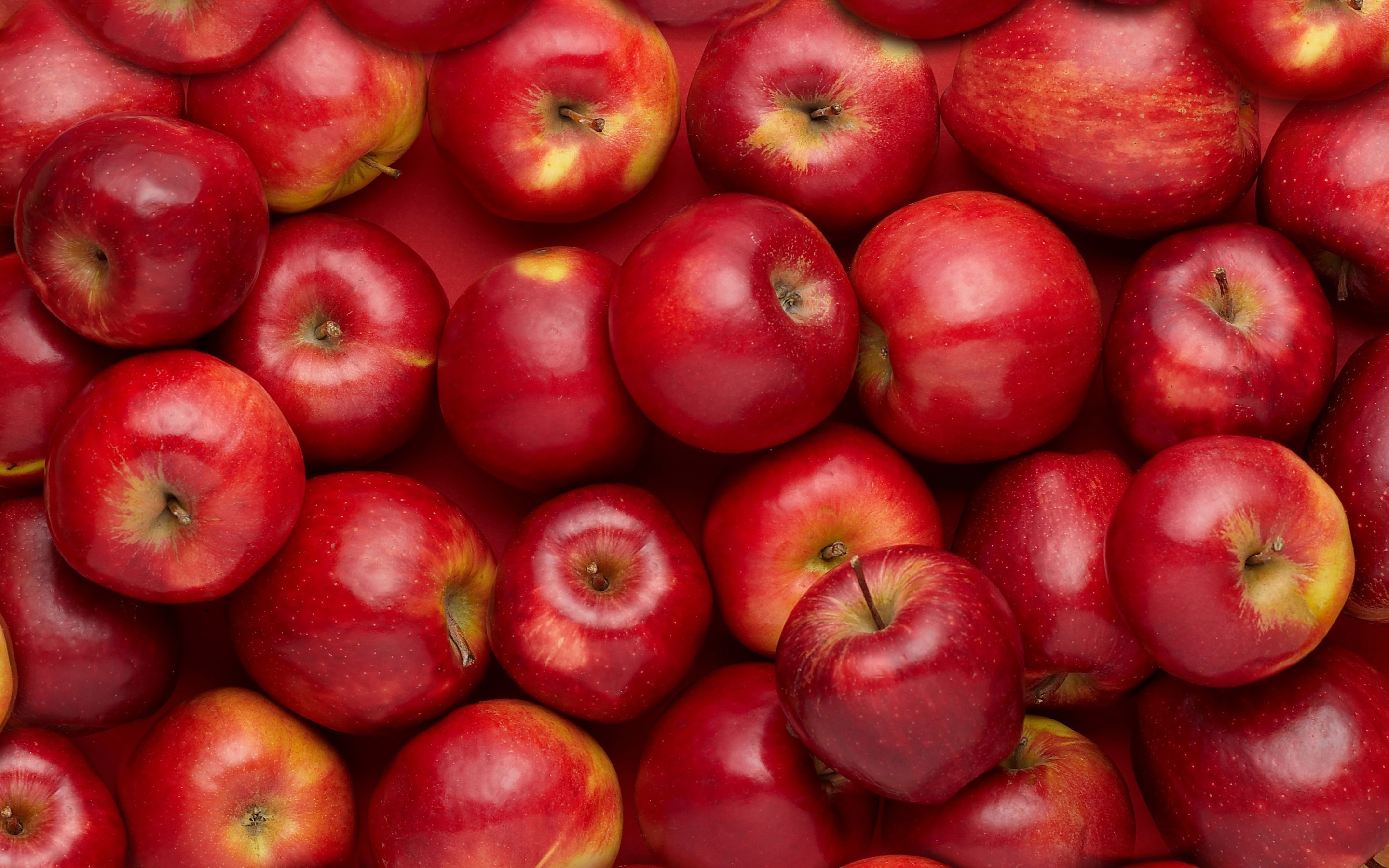 red apple wallpaper 34687