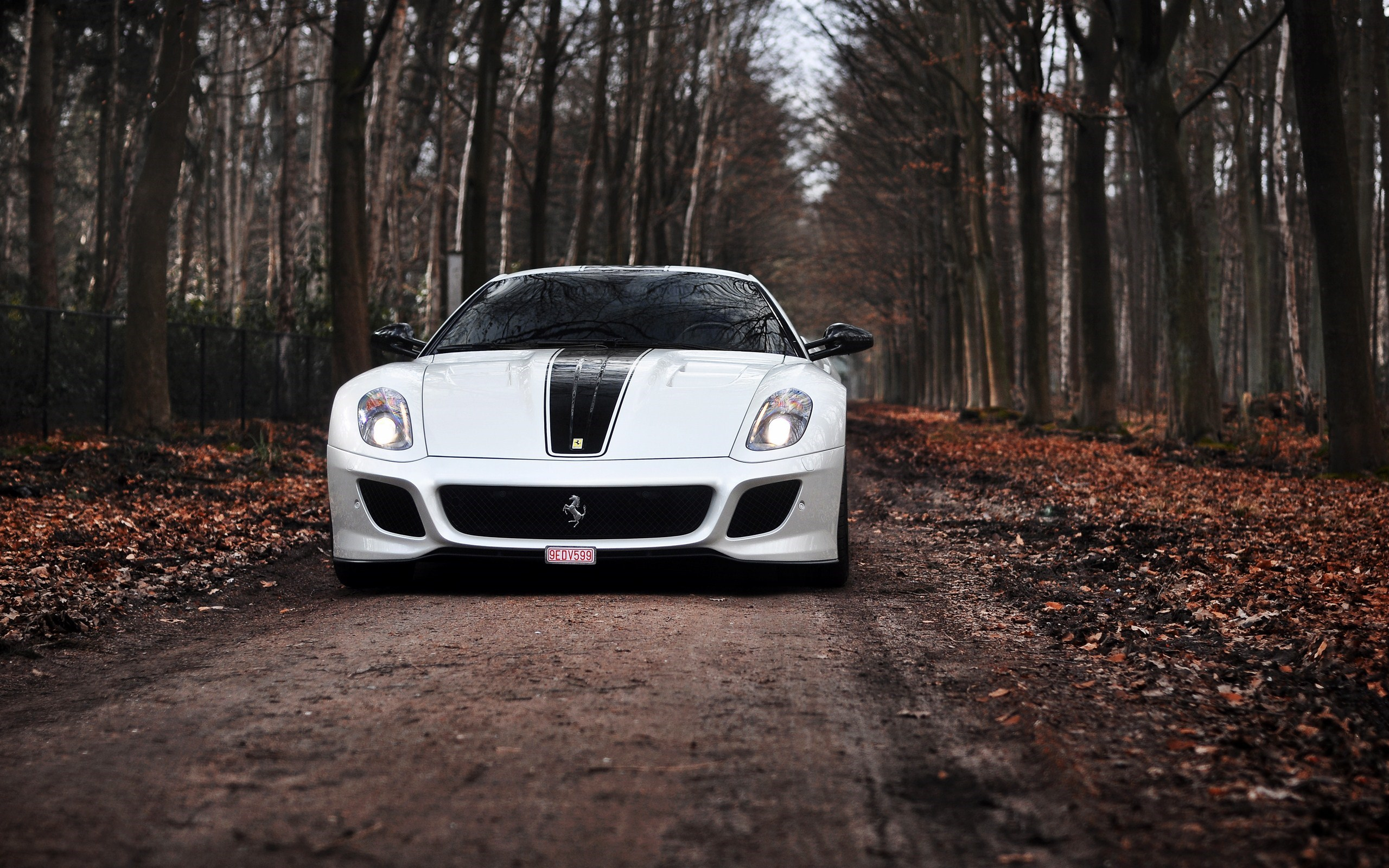 stunning white ferrari wallpaper 36131