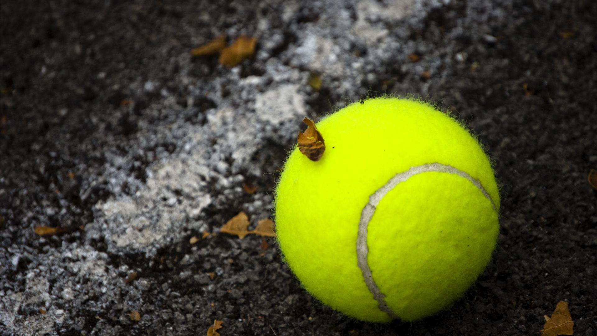 Tennis Ball Up Close Wallpaper 59881 1920x1080 Px HDWallSource