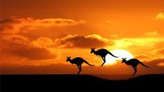 Australia Wallpaper 23884