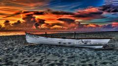Beach Sunset 28815